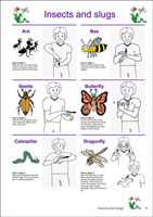 Auslan Children's Picture Dictionary - Volume 2 - Page Sample